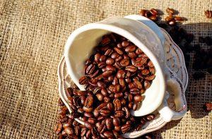 tasse de café en grain du costa rica