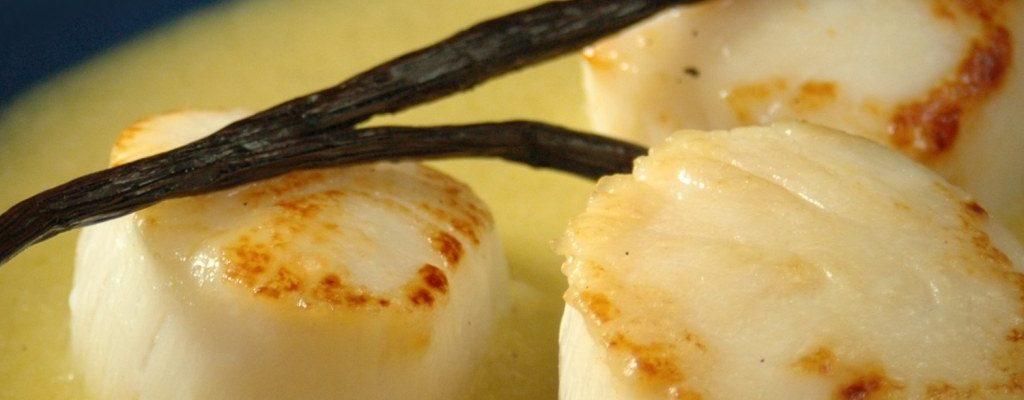 Zoom sur la vanille et ses caractéristiques