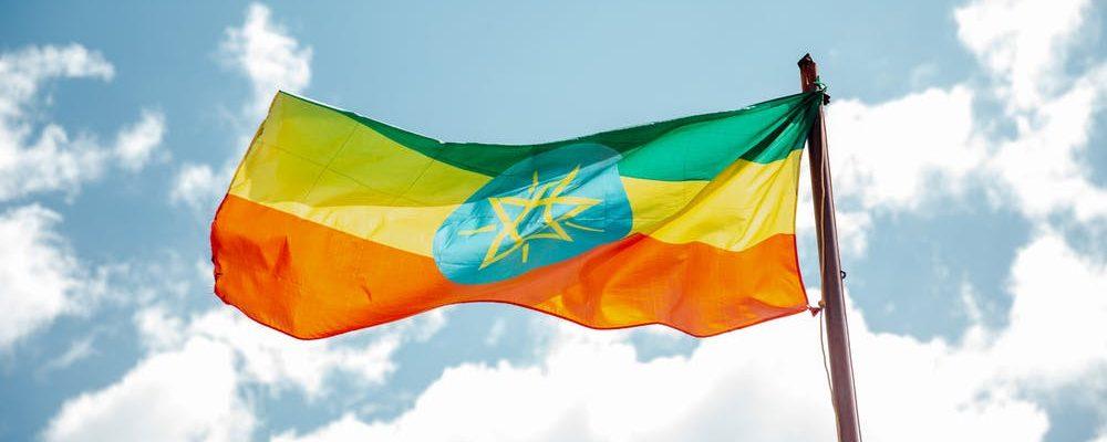 Le café d'Éthiopie : le berceau du café